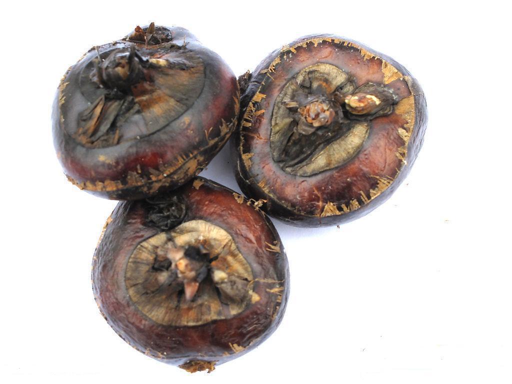 """马蹄(荸荠)是贺州市八步区大宗农产品,主产于沙田、鹅塘、莲塘、贺街等镇,2003年全区马蹄种植面积5.89万亩,总产10.47万吨。八步马蹄是果蔬兼用型保健食品,既可鲜吃,又可加工成马蹄罐头、马蹄粉、马蹄糕等系列产品,具有清热解毒、凉血降压的功效。""""芳林马蹄""""是八步的名优特产,其球茎扁圆形,表面光滑,成熟后呈深栗色或枣红色,果大,单果重大的可达55."""