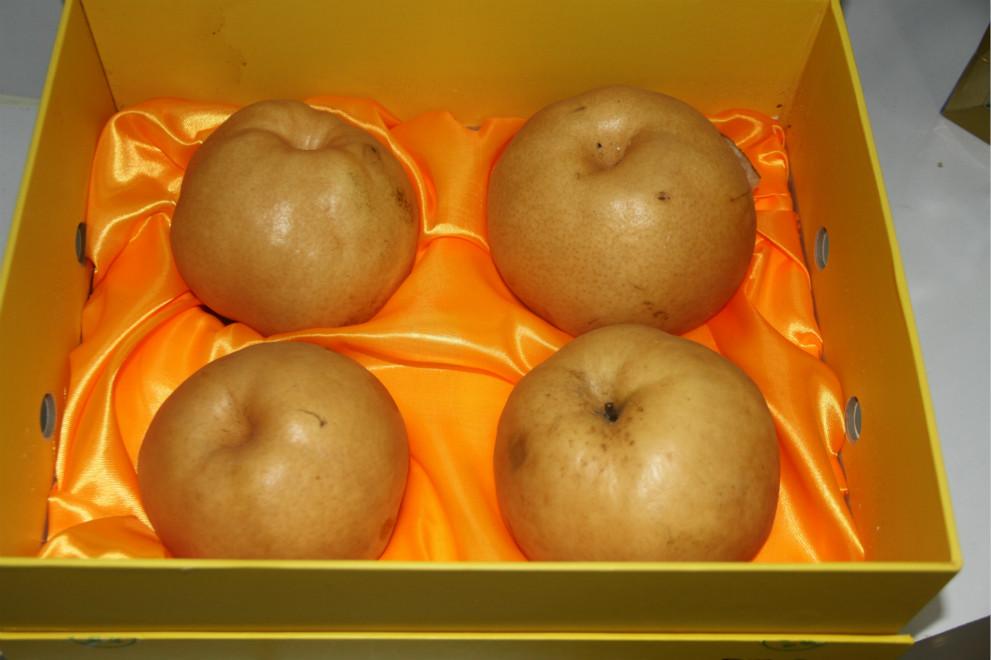 鲜果之金果梨